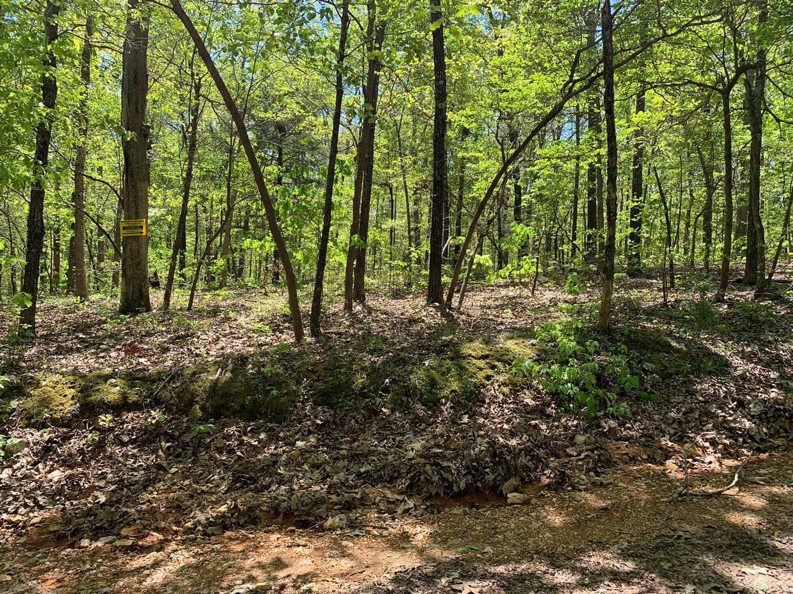 Lot 9, Blackbird Drive, Ozark Acres, AR 72482